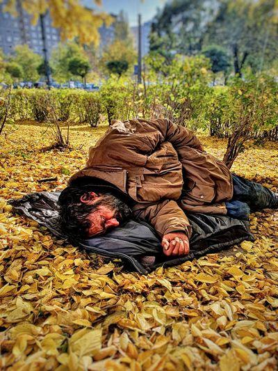 Man sleeping on leaves
