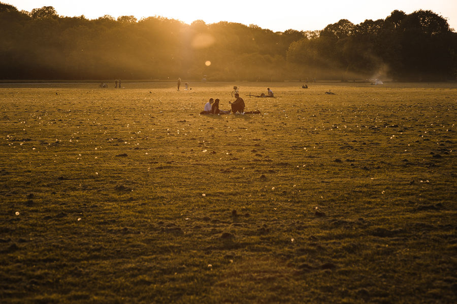 Chilling in a Park Chilling Sunlight Beauty In Nature Day Environment Evening Sun Field Grass Group Of People Land Landscape Leisure Activity Lifestyles Moody Nature Outdoors Park Plant Real People Scenics - Nature Sky Summer Tree Unrecognizable Person Urban