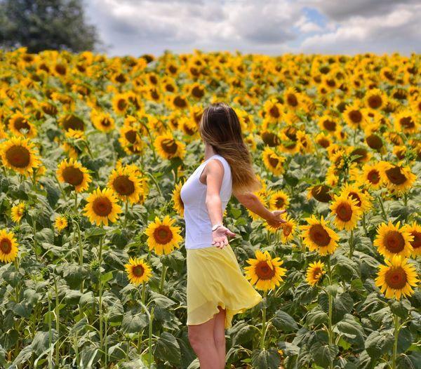 Rear view of woman standing in sunflower field