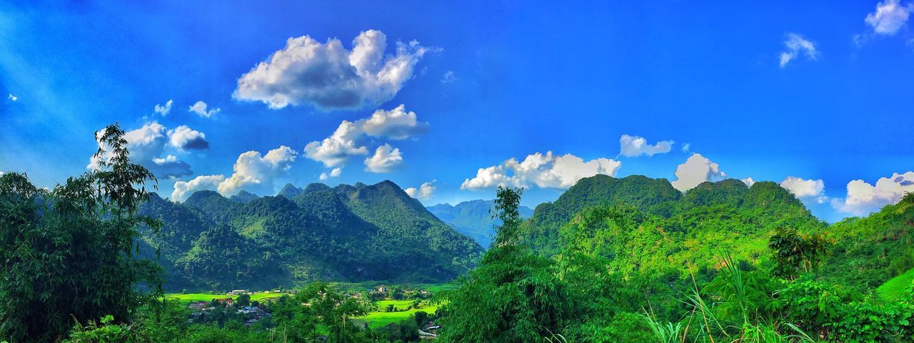 Sky Nature Tree Beauty In Nature Blue Cloud - Sky Day No People Green Color Forest Mountain Landscape Tranquil Scene Growth Outdoors Tranquility Scenics hot Hot Day First Eyeem Photo