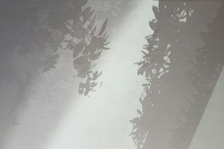 Light And Shadow Leaves Shadow Shadows Shadows & Lights Surface Backgrounds Textured  Full Frame Focus On Shadow Surface Shadow Long Shadow - Shadow Fabric