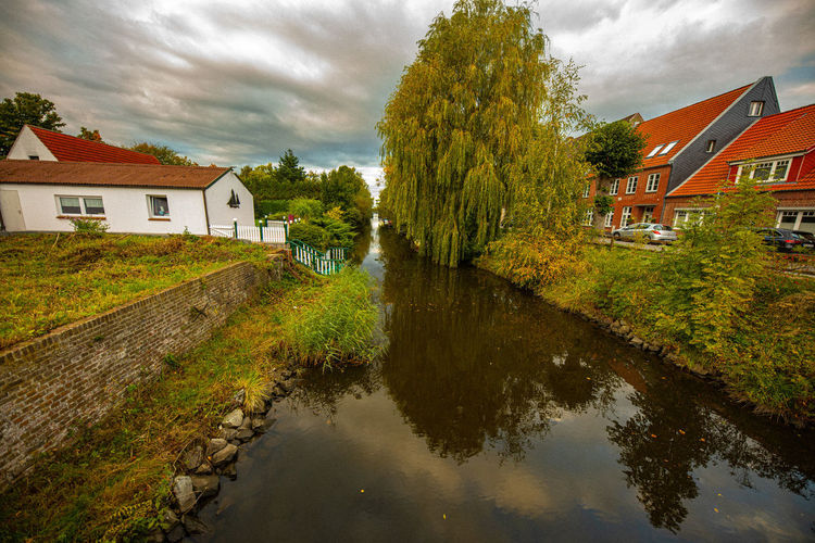 Trees by river and houses against sky