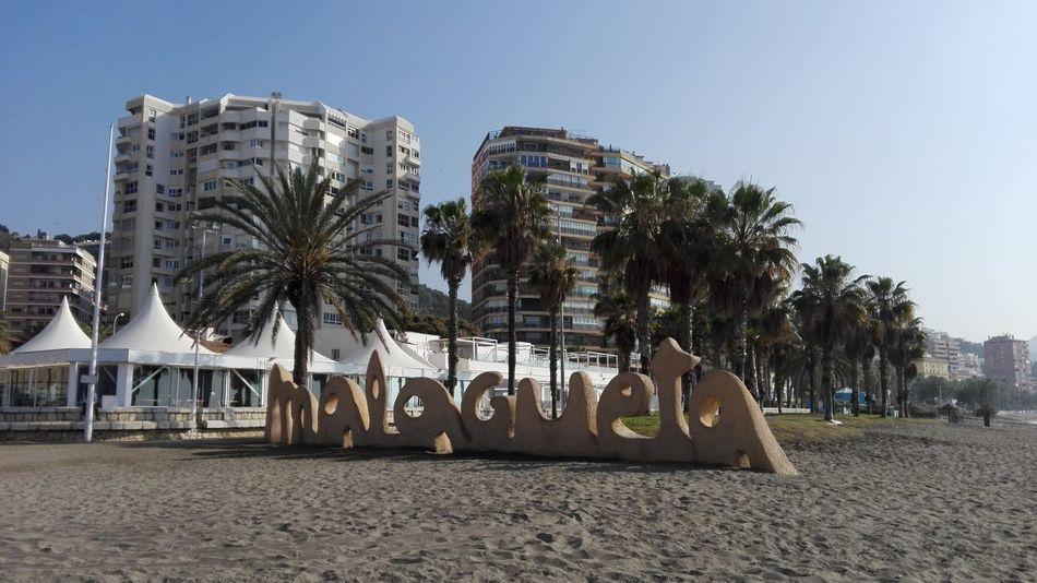 Palm Tree Tree Beach Outdoors Day No People Sky City