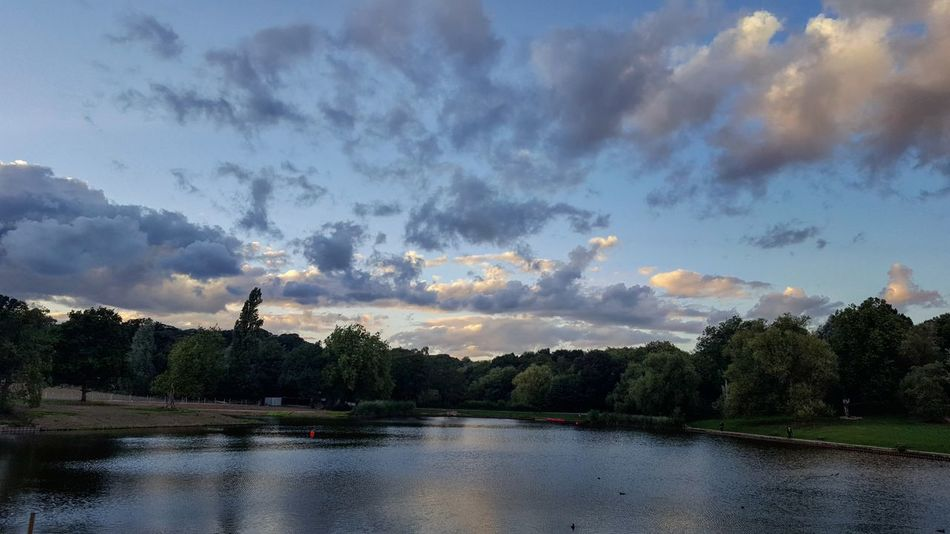 Sunset_collection Sunsettime Skyporn Beautiful Nature Landscape LONDON❤ Pond Nofilter Naturelovers EyeEm Best Shots Hampstead Heath Ponds