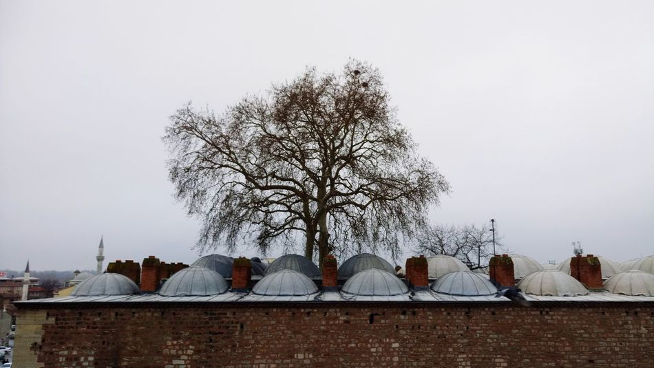 #Edirne #Kervansaray Politics And Government Tree City Winter Snow Cold Temperature Sky Architecture Building Exterior Animal Themes Roof Tile Settlement Traditional Building TOWNSCAPE Tiled Roof  Human Settlement Roof Cityscape Town
