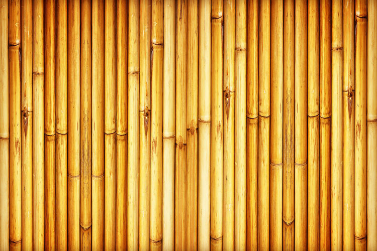 Full frame shot of bamboo on wall