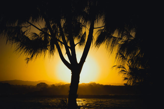 Australia & Travel Silhouette Beauty In Nature Landscape Hello World EyeEm Gallery Eyeem Photo EyeEm Masterclass Still Life First Eyeem Photo Internet Addiction My Favorite Place Sunset People Of The City Battle Of The Cities The Culture Of The Holidays Overnight Success Light And Reflection