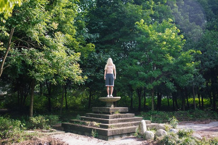 Rear view of man standing on staircase in forest