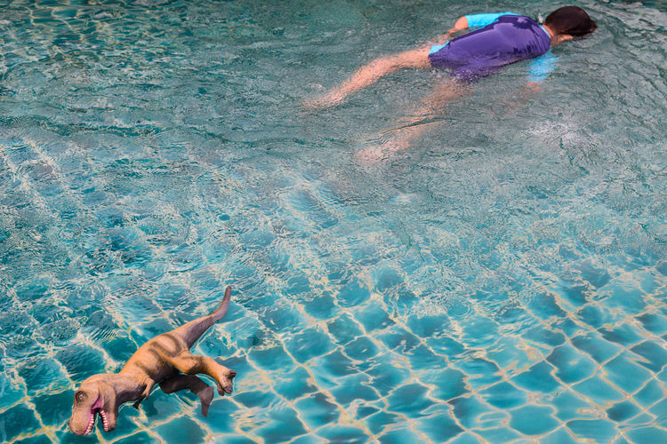 High angle view of man and toy dinosaur in swimming pool