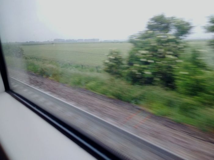 Gloomy Train Rides Uksummer Train Rainy Days Traveling Commuting Countryside Blurred Visions Blurry Greenery Railway Track Reflections