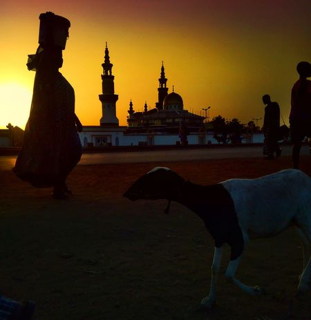 City Sunset Statue Silhouette Religion Place Of Worship Sculpture Business Finance And Industry Cultures Arts Culture And Entertainment