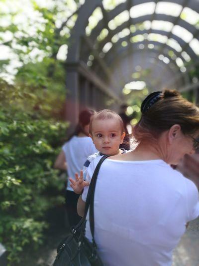 Garden Hamilton Hibaby Adorable Street Queue People Rear View Summer Outdoors Snapshot