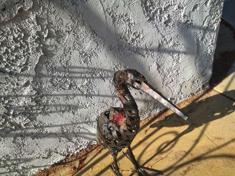 Bird decoration. Beak Metal Avian Bottlebrush Callistemon Bird Bird Representation No People One Red Black Stucco Rusty Shadow Sunlight High Angle View Close-up Deterioration Weathered