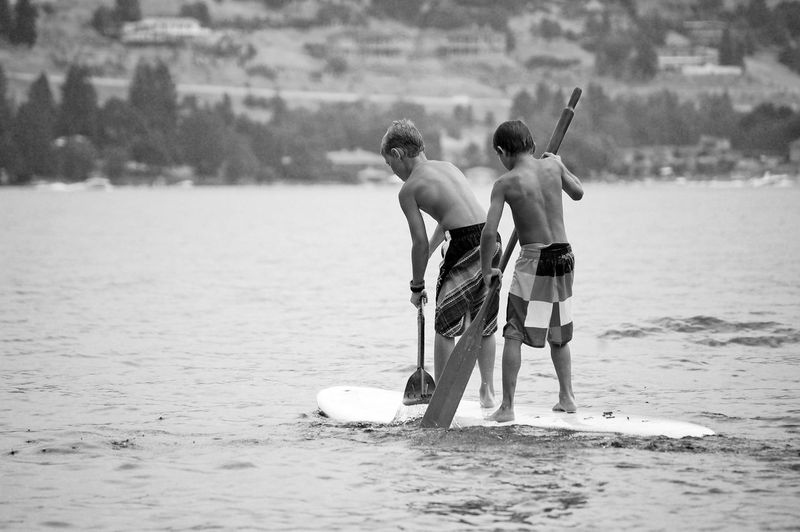 Beach Bonding Boys Day Full Length Lake Leisure Activity Lifestyles Love Men Nature Paddle Paddle Boarding Paddleboarding Paddling Person Rear View Relationships Sea Standing Standuppaddleboarding Togetherness Vacations Water Waterfront Black And White Friday Summer Sports