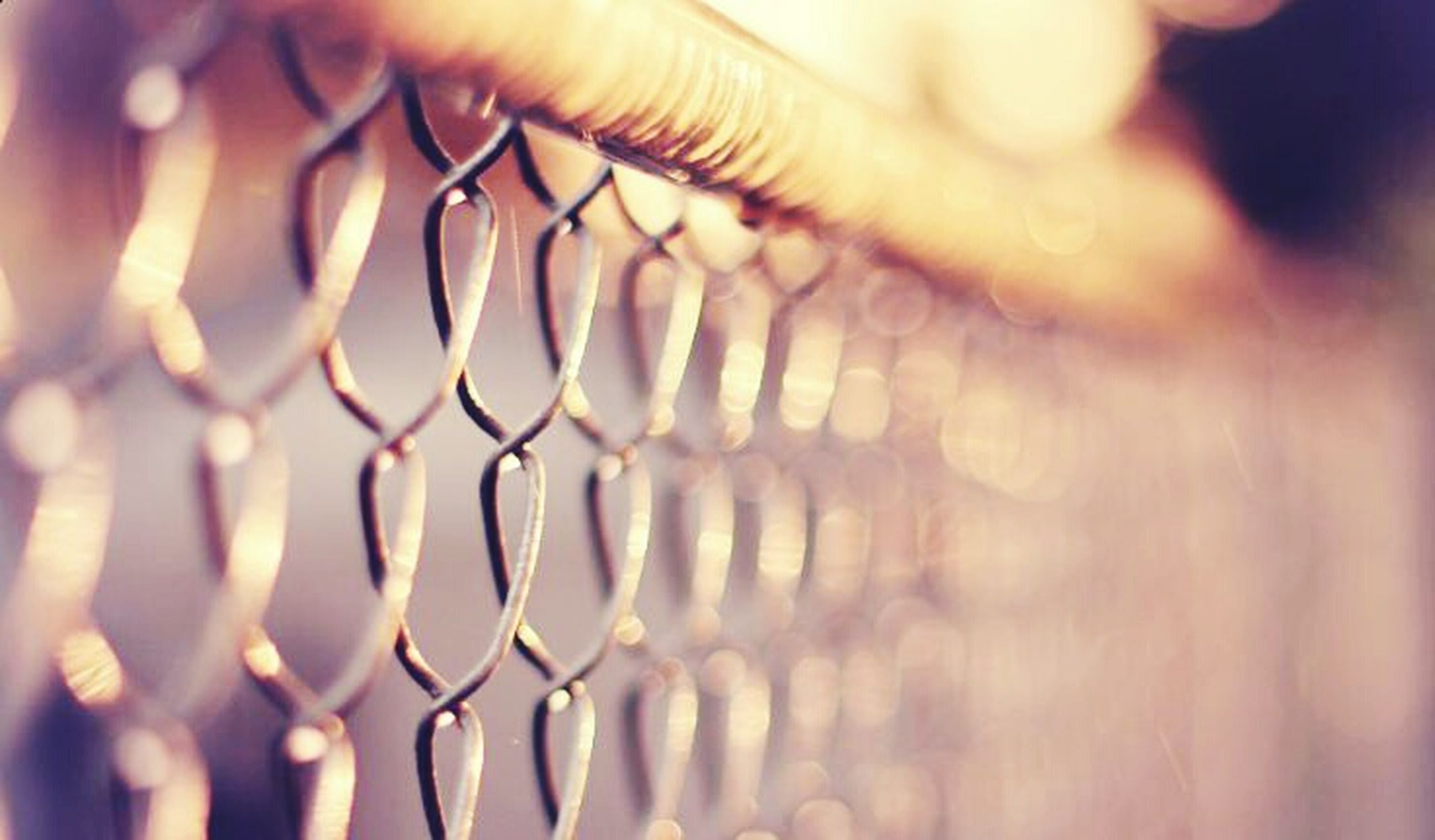 focus on foreground, close-up, selective focus, pattern, metal, indoors, metallic, protection, full frame, part of, detail, design, backgrounds, safety, repetition, fence, day, shape, no people