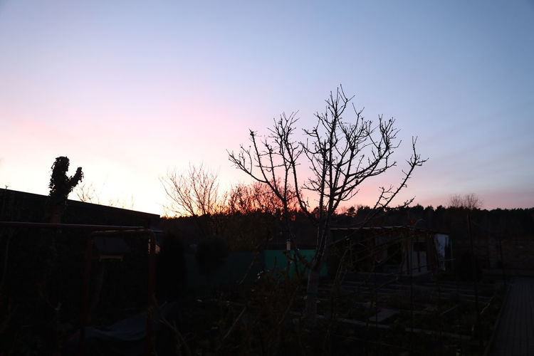 Architecture Bare Tree Building Exterior Built Structure Clear Sky Day House Nature No People Outdoors Silhouette Sky Sunset Tree