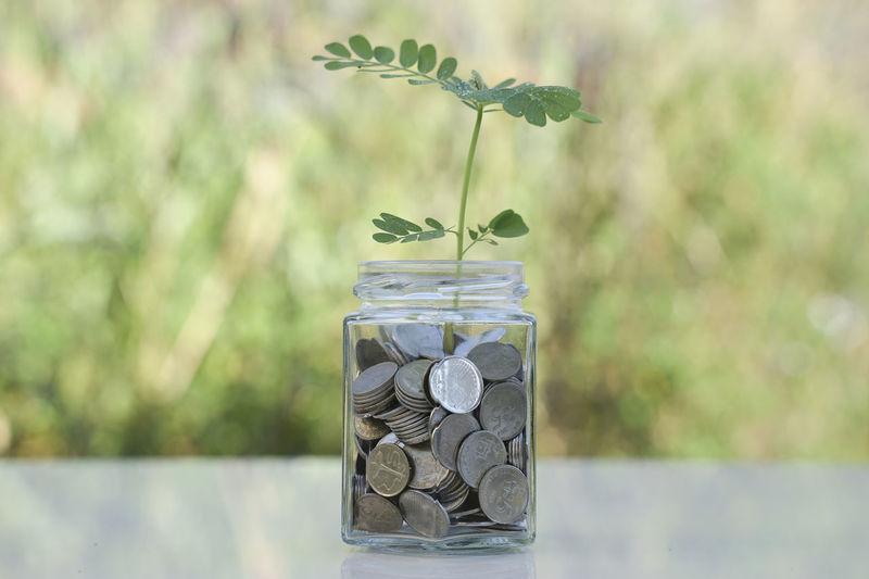 Growth Jar
