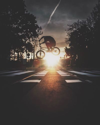 Sunset Silhouettes sunset Cityscape citysc Sunset Silhouettes Sunset Cityscape City Street City Bmxlife Moody Sky Bmx  Road Tree Transportation Sky Plant Nature City Silhouette Sunlight Mode Of Transportation The Way Forward Street Outdoors Adventures In The City