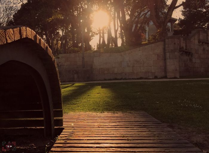 """Komorebi (japonés): """"Juego de luces y sombras que se produce con la interacción de la luz solar y las hojas de los árboles""""... Poesía en cuatro sílabas 😍. Dime Que Se Siente El Arte De Helarte En Cursiva, Para No Soltarte Da Gusto Odiarme No People Outdoors Sunlight Tree Nature Scenics Tranquil Scene Beauty In Nature Sunset Make EyeEm A Troll-Free Zone! Exceptional Photographs"""