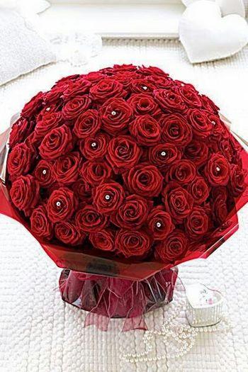 Que rosas mais lindas :)