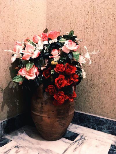 EyeEm Flowers
