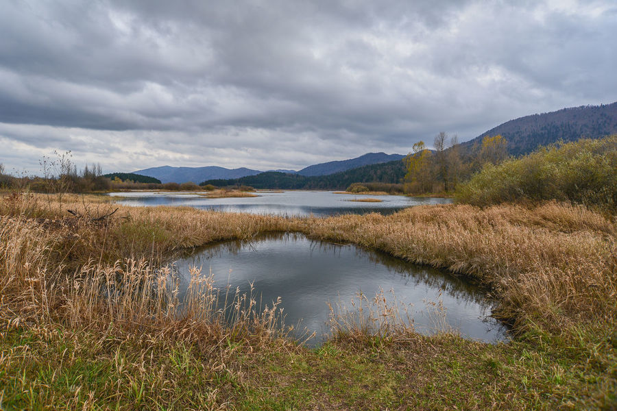 Cerknica Lake Cerkniško Jezero Beauty In Nature Cerknica Cloud - Sky Day Grass Lake Lake View Landscape Mountain Mountain Range Nature No People Outdoors Reflection Scenics Sky Tranquil Scene Tranquility Travel Destinations Water