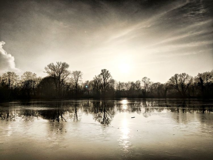 Berlin Berlinsky Skyoverberlin View Reflections Water Reflections Pixel2 Googelpixel2 Outside Photography Naturephotography Landscape Beauty In Nature Sky Bluesky Watertreesky Pixelphotography HDR Hdrphotography Reflection Lake Water Tree Cloud - Sky Nature No People Outdoors