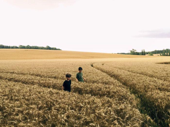 Two boys walking in a wheat field against sky