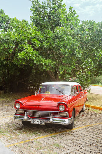 Vintage red ford taxi on parking lot, Cuba, Varadero, 4 November 2016 Mode Of Transportation Tree Transportation Red Car Motor Vehicle No People Outdoors Retro Styled Day Land Vehicle Nature Taxi Ford Vintage Vintage Car Cuba Varadero Cuba. Varadero