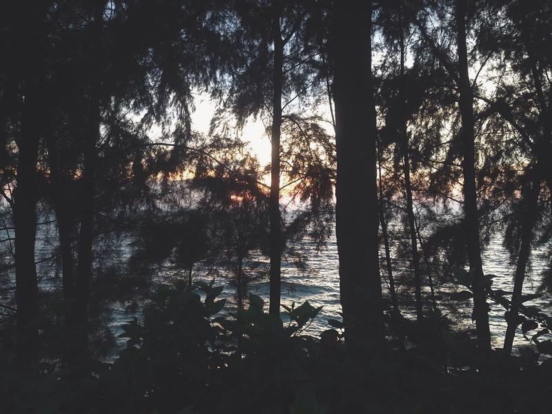 find some peace Sunrise