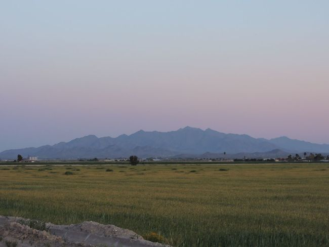 Mountains at dusk Landscape Scenics Nature Beauty In Nature Agriculture Tranquil Scene Tranquility Outdoors Sky Mountain No People Tree Day