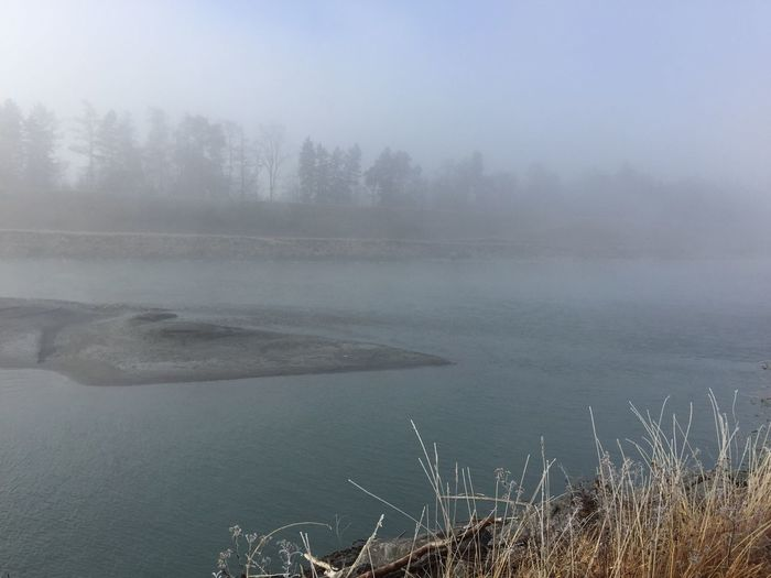 River Rhine, Fog And Sun Water Tranquility Fog Scenics Cold Temperature Idyllic Outdoors
