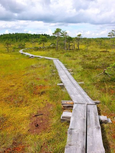 Duckboards at Torronsuo National Park, Finland Beauty In Nature Bog Cloud - Sky Day Duckboard Field Grass Hiking Landscape Nature No People Outdoors Path Path In Nature Pathway Scenics Sky Swamp Swamp Photos Torronsuo Tree Tree Water