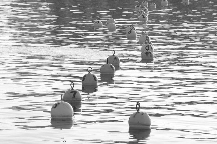 Barcolana 2016 Trieste Italy Trieste Barcolana2016 Triesteraccontatrieste Triestephotodays Trieste2016 TriesteSocial Friuli Venezia Giulia