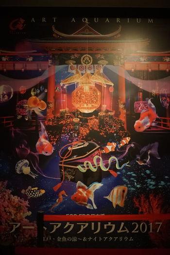 アートアクアリウム2017 ポスター Art Aquarium Exhibition Poster Japanese Culture GoldFish! Indoors  Hello World Enjoying Life Taking Photos Tokyo,Japan September 2017 いま気づいたけど下の文字がアー 、アクアリウムになってる…