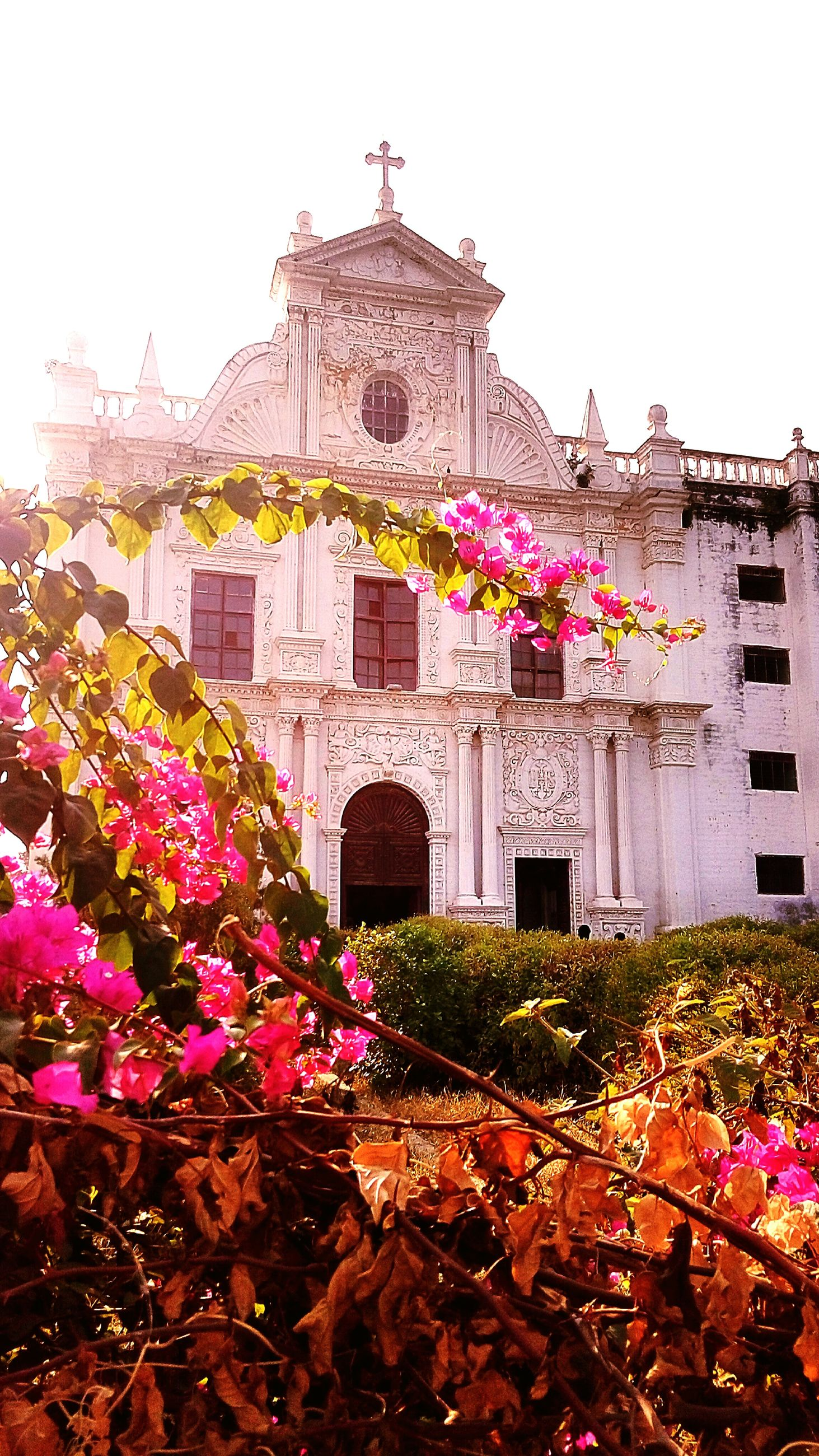 architecture, building exterior, flower, built structure, religion, place of worship, spirituality, church, clear sky, low angle view, famous place, plant, cathedral, fragility, day, history, freshness, travel destinations