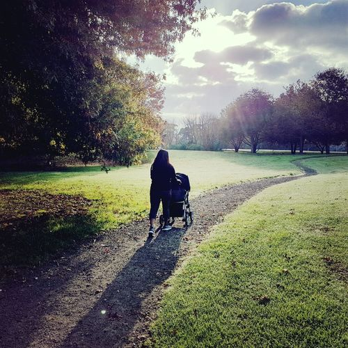 Towards a new beginning Loneliness Evening Time Colourful Leaves Seasonal Photography Automne Nature Beautiful Grass Ground Mother-child Splashing Sunlight Greenery A New Beginning Child Togetherness Tree Full Length Bonding Shadow Childhood Rear View Baby Stroller Baby Carriage