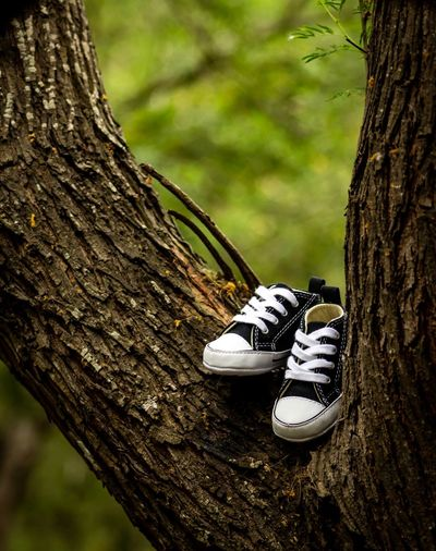 Baby shoes Eyemnaturelover Eyem Gallery Eyem Best Shots Eyemphotography Tree Trunk Tree Trunk Plant Shoe Focus On Foreground Nature Close-up Day No People Outdoors Growth Branch Beauty In Nature Land