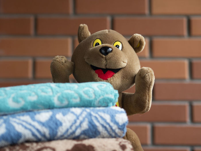 Close-up of stuffed toy against wall