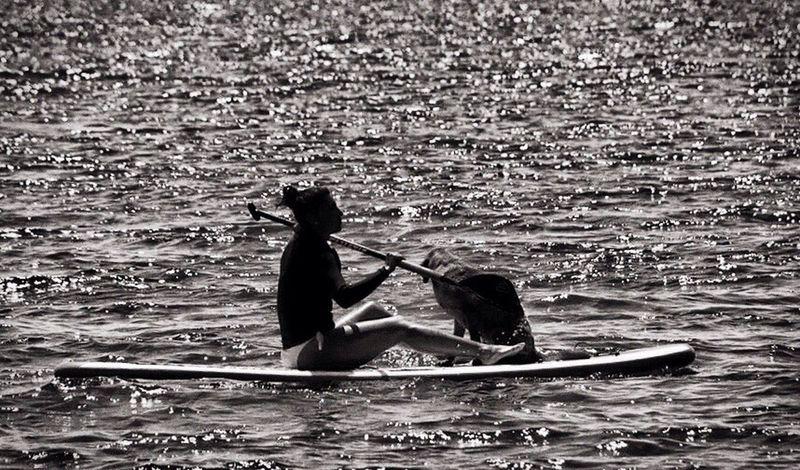 Surf Woman Dog Relaxing Lake Gardalake