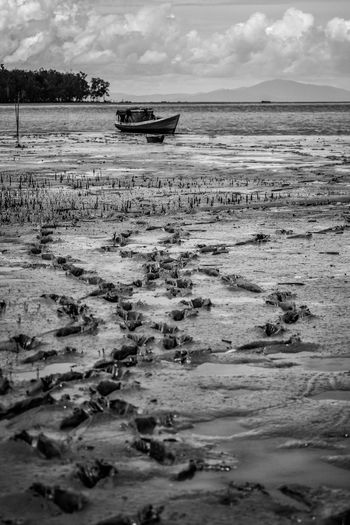 Stranded fishing boats Black & White Mangrove Forest Mud Beach Anchored Beach Beauty In Nature Bintunibay Blackandwhite Blackandwhite Photography Boat Cloud - Sky Day Fisherman Mode Of Transport Mud Nature Nautical Vessel No People Outdoors Sand Sea Shadow Sky Transportation Water
