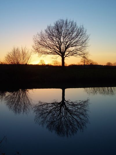 Reflection Sunset Silhouette Nature Sky Lake Beauty In Nature Scenics Water Tree Sun Landscape Outdoors No People Dawn Clear Sky Day EyeEmNewHere