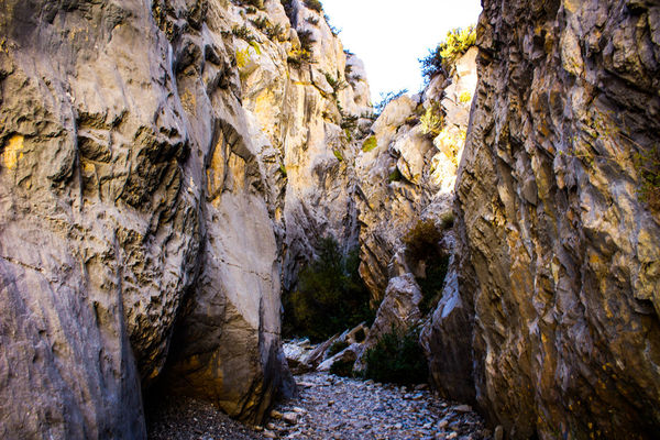 The Way Forward Canyon Narrow Passage Rock Formation Narrow Nature Tranquil Scene Non-urban Scene Outdoors Rugged