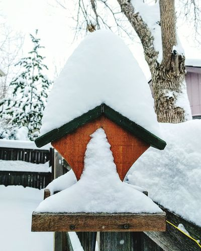 Snow Snow ❄ Snow Day Winter Winter Wonderland Birdhouse Cold Days Cold Day White