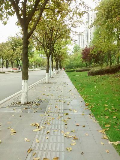 天府软件园 Tianfu Software Park Chengdu China