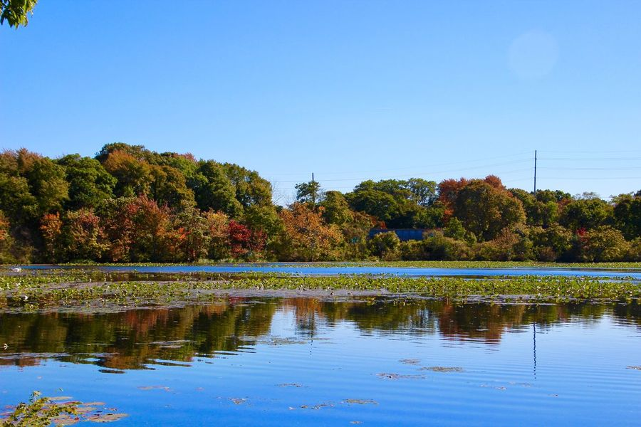 Autumn Collection landscape beauty in nature colors of autumn clear blue sky water reflections mirror images Tranquility Scenics - Nature Copy Space No People