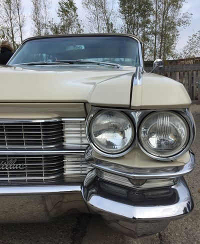 Vroum ! Car Transportation Mode Of Transport Land Vehicle Headlight Vintage Car Retro Styled Old-fashioned Front View Day No People Luxury Outdoors Tree Close-up