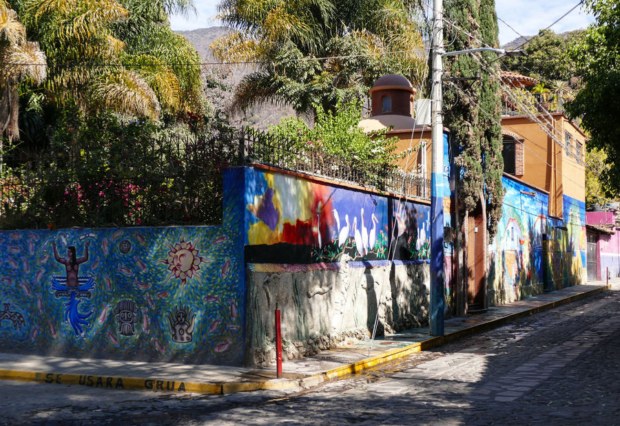 Architecture Building Exterior Built Structure City Day Graffiti Art House Multi Colored No People Outdoors Plant Travel Destinations Travel Photography Tree