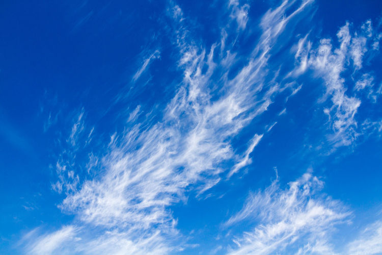 Cloudscape Backgrounds Beauty In Nature Blue Cloud Cloud - Sky Cloudscape Cloudy Day Full Frame Idyllic Low Angle View Majestic Nature No People Outdoors Scenics Sky Sky Only Softness Suitable For Adding Text Tranquil Scene Tranquility White Wispy Wispy Clouds
