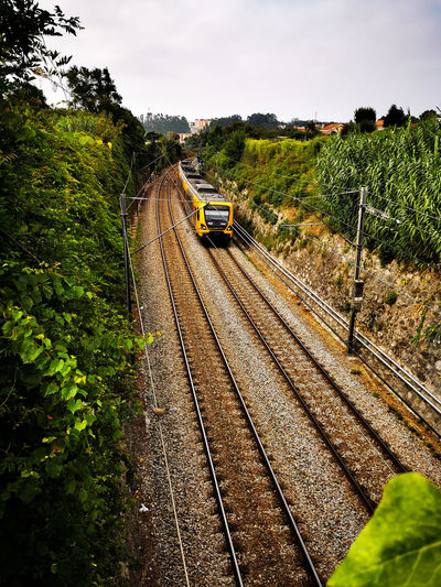 High angle view of train amidst trees against sky
